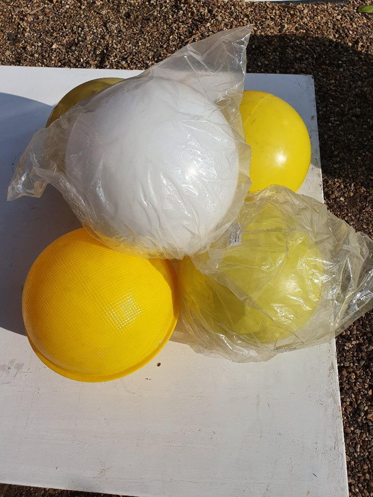 Belisha Beacon Shells White & Yellow